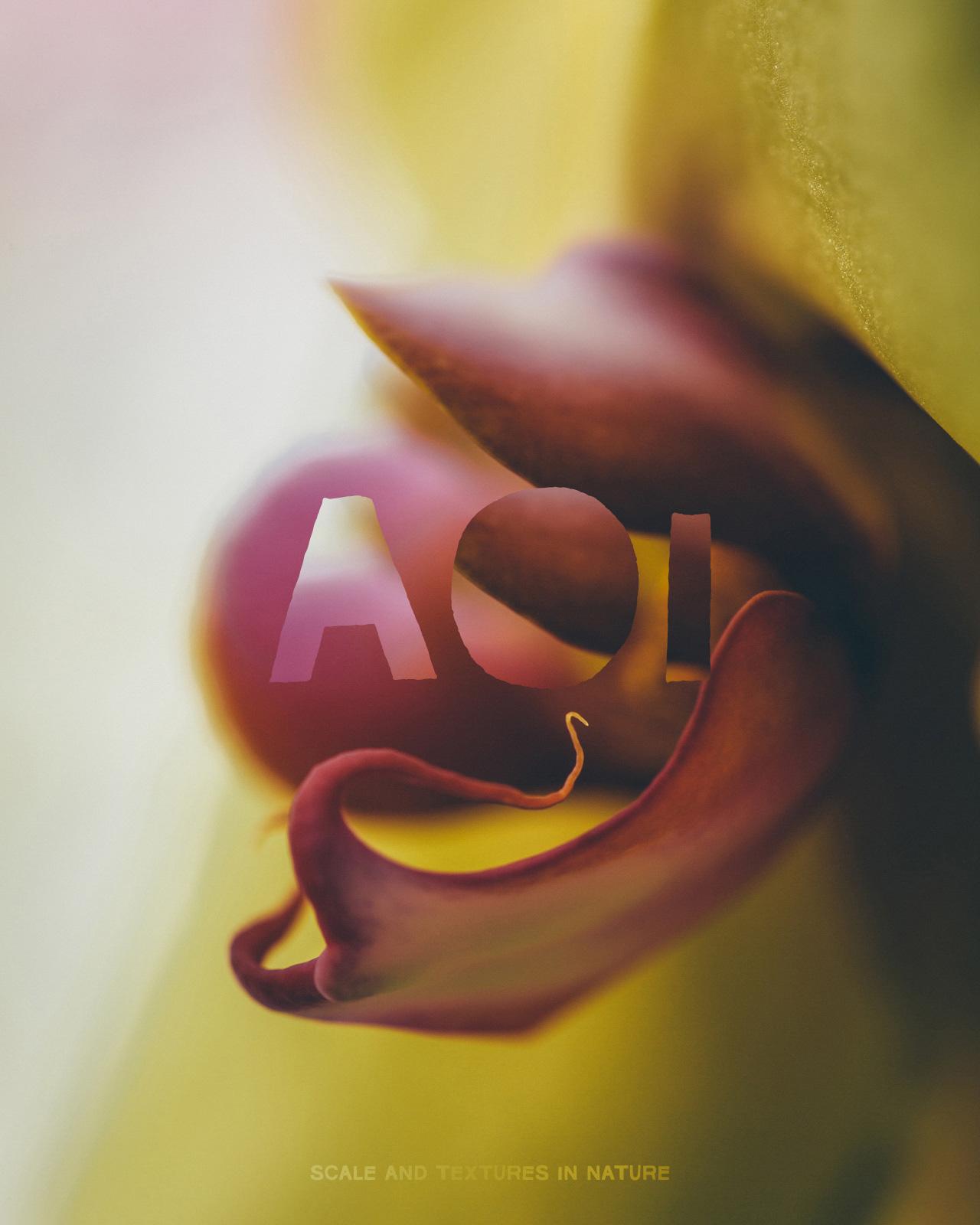 A O I